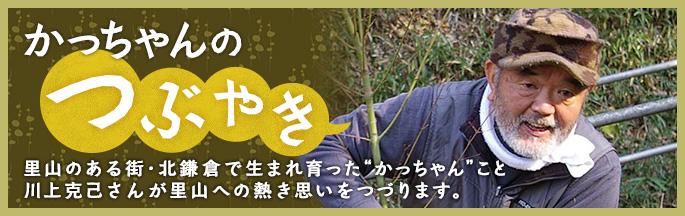 かっちゃんのつぶやき 里山のある街・北鎌倉で生まれ育ったかっちゃんこと川上克己さんが里山への熱き思いをつづります。